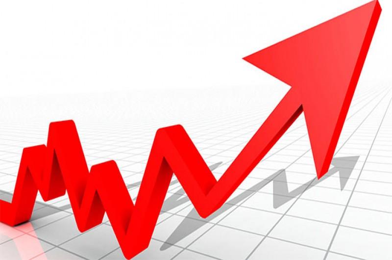 MUTFAK ENFLASYONU 2016'DA YÜZDE 10,6 OLDU